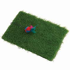 KITTYRAGEOUS TurfScratcher with Feather/Ball