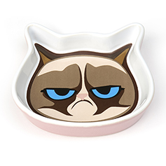 Grumpy Cat Face 5