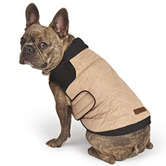 Eddie Bauer PET, Graham Point Hunter's Jacket, Khaki